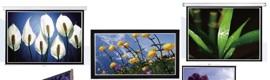 Catálogo 2010 de pantallas de proyección Classic de Dimasa-Neoko