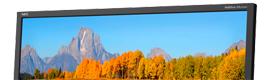 Nec Display Solutions refuerza la serie Multisync EA con un nuevo modelo de 24 pulgadas