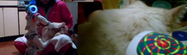 Lo último en telepresencia: cepillar al gato a distancia