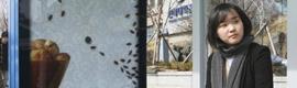 Una campaña interactiva alerta sobre la presencia de cucarachas en los hogares