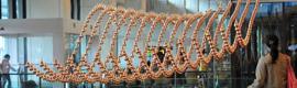 El aeropuerto Changi de Singapur inaugura una espectacular escultura de arte cinético