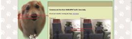 Una residencia canina de EE.UU. instala cámaras de LILIN para la supervisión online de las mascotas