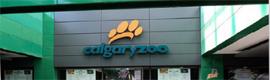 El Conservatorio Enmax del Zoo Calgary implanta un kiosco interactivo para fomentar la conciencia ambiental
