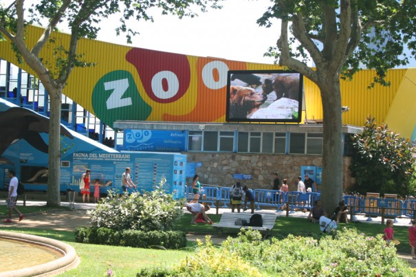 Pantalla Led Dream Zoo Barcelona