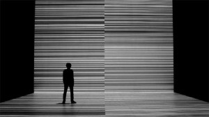 Test pattern Ryoji Ikeda foto Marc Domage