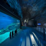Rosco ayuda a crear un entorno de mundo submarino en el acuario The Blue Planet de Copenhague