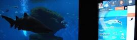 Palma Aquarium dota de interactividad con AOPEN sus instalaciones