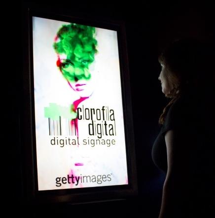 crambo y clorofila digital showroom audiovisual