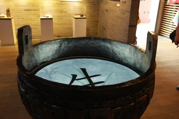 dnp Instituto Confucio