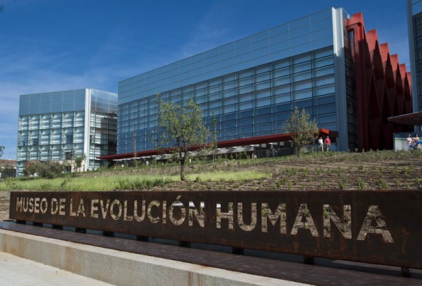 Museo de la Evolucion Humana (MEH) Burgos