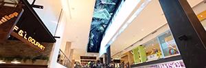 El Macquarie Centre abre sus puertas con una pantalla curva de techo de 30 metros