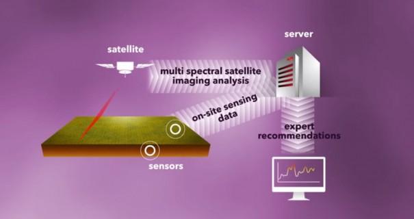 Proyecto SotSat