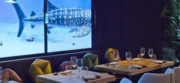Videowall restaurante Yubari Barcelona 2