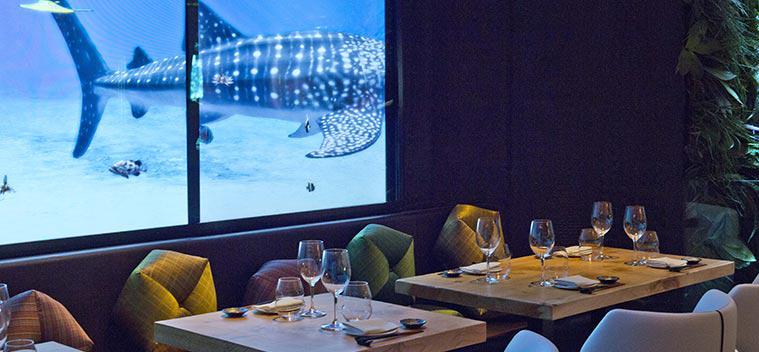 Un grande videowall interattivi che simula un acquario for Acquario da parete