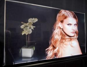 Planar Transparent OLED