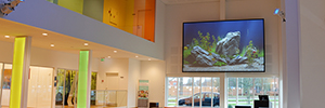 A dnp Supernova screen helps to promote innovative thinking in a Danish Academy
