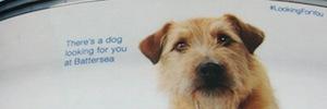 Comunicación interactiva DooH y RFID para fomentar la adopción de animales