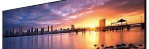 TD Maverick ofrece al canal la nueva gama de monitores Bravia Full HD y 4K de Sony