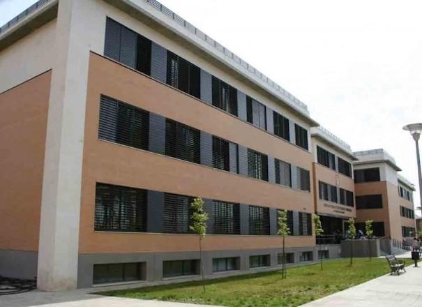 Vitelsa Universidad Sevilla Enfermeria