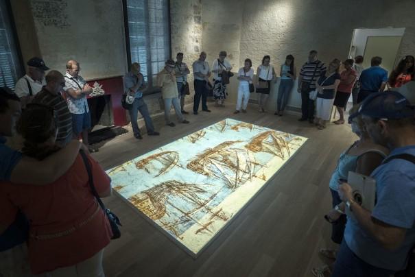 Sarner AV Stumpfl Museo Guerra Malta