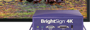 Reproduction of contents HDR, the big bet of BrightSign ISE 2016