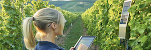 Ericsson grows the IoT in the vineyards with the connected system TracoVino