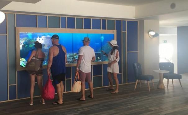 Virtualware en Hovima Hoteles La Pinta