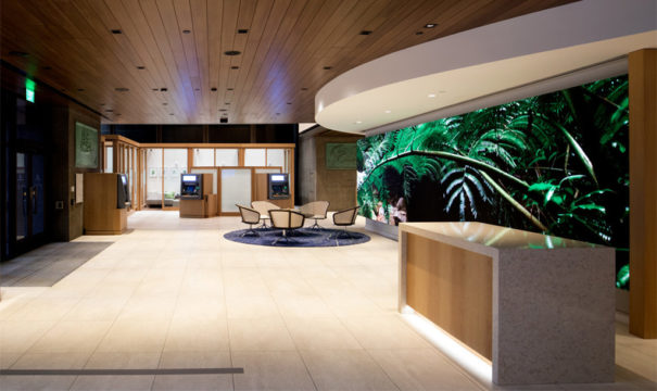 Videowall SAN Display Banco Hawai
