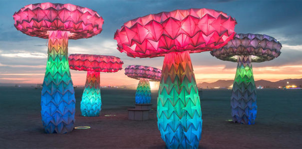 No Spectators- The Art of Burning Man