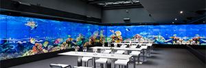 Brandenburger Tor Museum: un showroom inmersivo en pleno corazón de Berlín