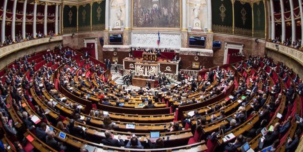 Asamblea nacional francesa riedel