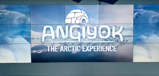 Userfull videowall en Arctic Experience