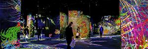 El arte japonés TeamLab cobra vida en el museo Amox Rex con la proyección de Epson