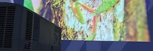 Estalella muestra las tendencias AV con NEC Display como protagonista