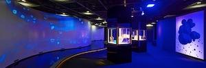 LG Display Bulgari Colors