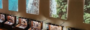 Museo Geologico RAS Sharp NEC Display